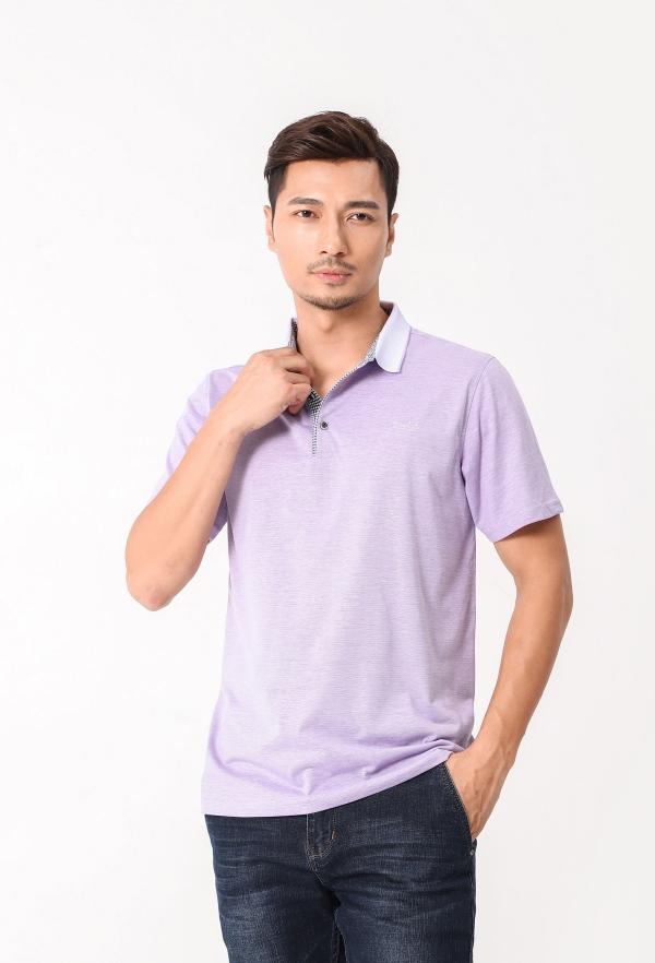 DP8001紫色