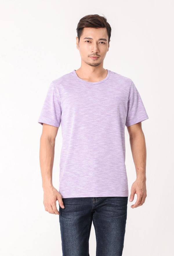 DT8001紫